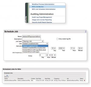 windchill-apps-vault-cleaner